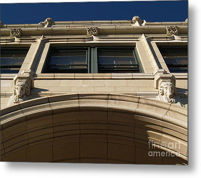 The Grove -- Looking Up Metal Print by Anna Lisa Yoder