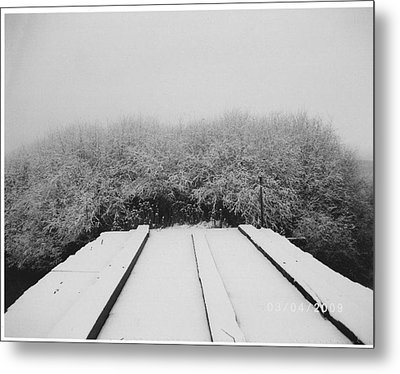 The Silence Of Winter Metal Print by James Rishel