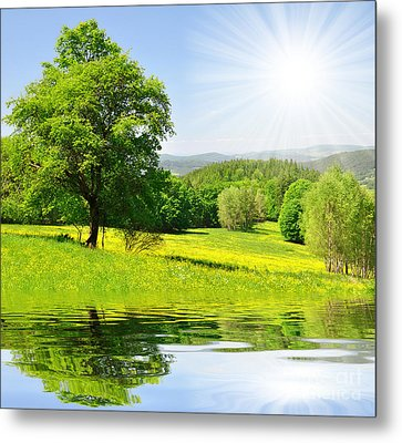 The Spring Landscape Metal Print by Boon Mee