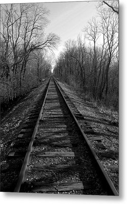 Tracks Metal Print by Brian Amick