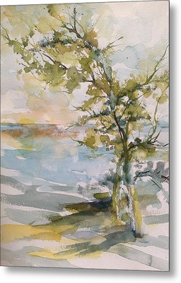 Tree Study Metal Print by Robin Miller-Bookhout