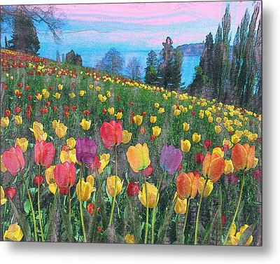 Tulips Lake Metal Print by Anthony Caruso