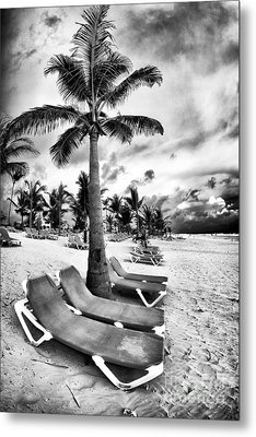 Under The Palm Tree Metal Print by John Rizzuto