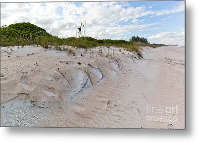 Walking In The Sand Metal Print by Michelle Wiarda