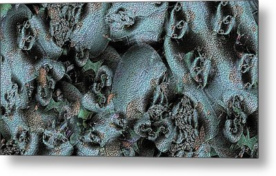 Weathered Metal Print by Ron Bissett