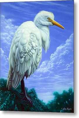 White Egret Metal Print by Larry Taugher