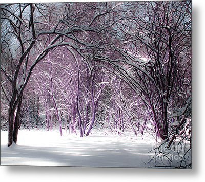 Winter Faeries Metal Print by Barbara McMahon