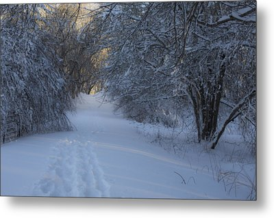 Winter Hike Metal Print by Andrew Pacheco