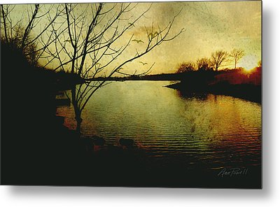 Winter Moody Sunset  Metal Print by Ann Powell