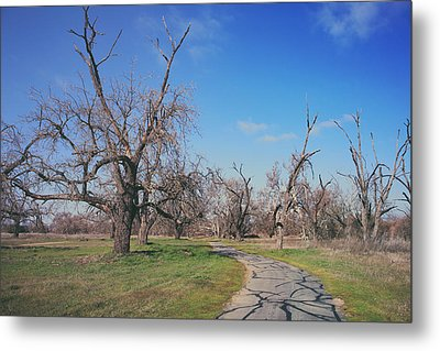 You Gave Me A Reason Metal Print by Laurie Search