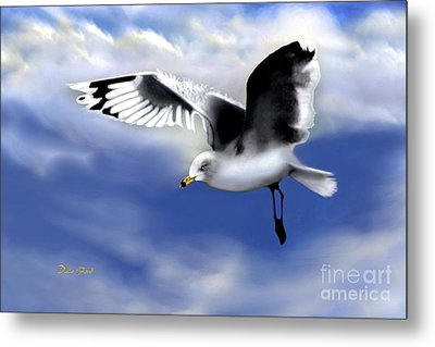Ruffled Feathers Metal Print by Dale   Ford