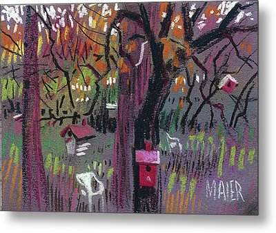 Five Birdhouses Metal Print by Donald Maier