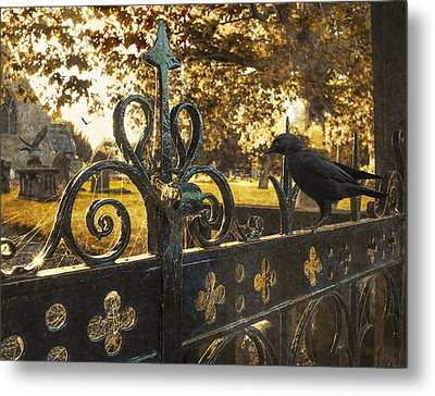 Jackdaw On Church Gates Metal Print by Amanda And Christopher Elwell