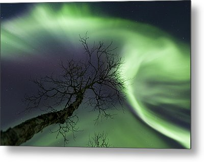 Northern Lights In The Arctic Metal Print by Arild Heitmann