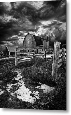 A Distant Thought Metal Print by Phil Koch