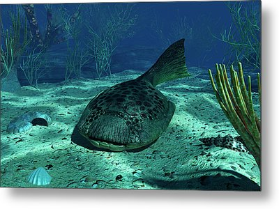 A Drepanaspis On The Bottom Metal Print by Walter Myers