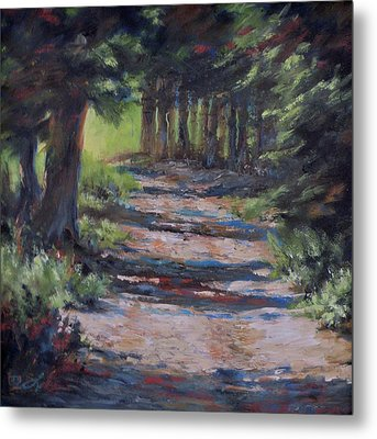 A Road Less Travelled Metal Print by Mia DeLode