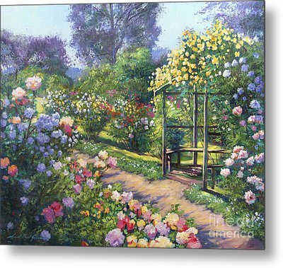 An Evening Rose Garden Metal Print by David Lloyd Glover