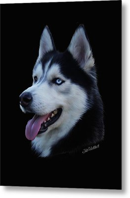 Apollo Metal Print by Julie L Hoddinott