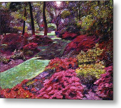 Azalea Park Metal Print by David Lloyd Glover