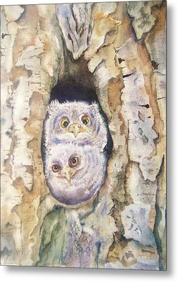 Baby Screech Owls Metal Print by Patricia Pushaw