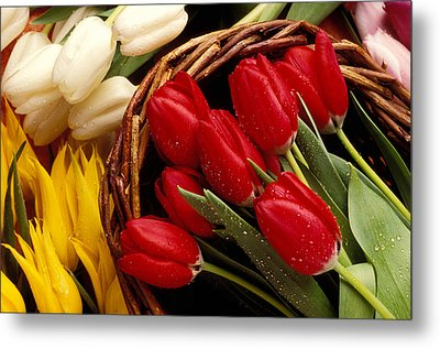 Basket With Tulips Metal Print by Garry Gay