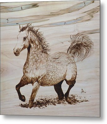 Baytar The Bold Metal Print by Jerrywayne Anderson