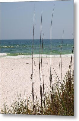 Beach View With Grass Metal Print by James Granberry