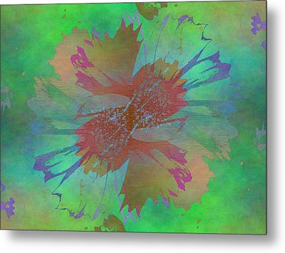 Blooms In The Mist Metal Print by Tim Allen