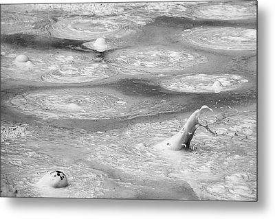 Boiling Mudpot - Artist' Paint Pots Yellowstone National Park Wy Usa Metal Print by Christine Till