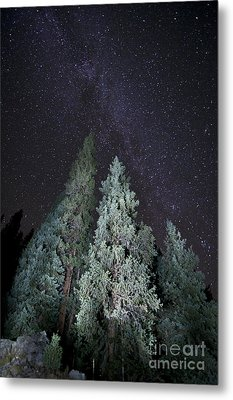 Bright Night Metal Print by Jeff Kolker