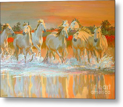 Camargue  Metal Print by William Ireland