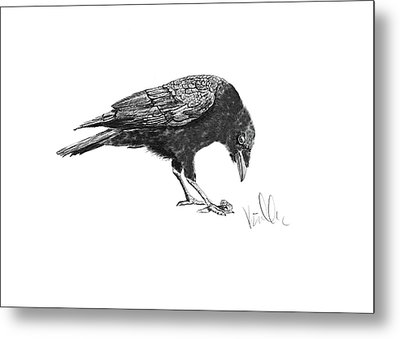 Caw Of The Wild Metal Print by Barb Kirpluk