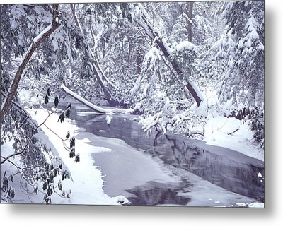 Cranberry River Winter Heavy Snow Metal Print by Thomas R Fletcher