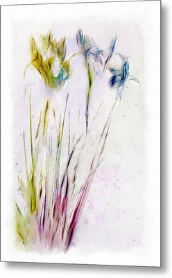 Dancing Irises Metal Print by Jill Balsam