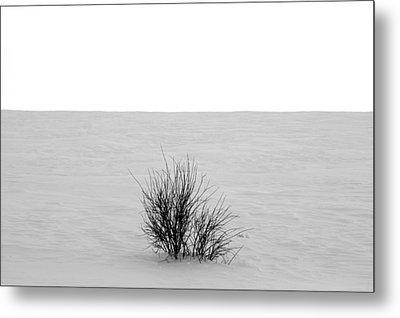 Deep Breath Metal Print by JC Photography and Art