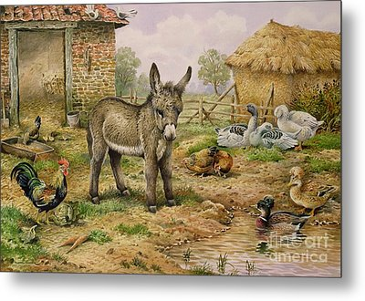 Donkey And Farmyard Fowl  Metal Print by Carl Donner