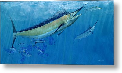 Double Up Marlins Metal Print by Kevin Brant