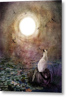 Dreaming Of A Koi Pond Metal Print by Laura Iverson