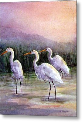 Egrets At Sunset Metal Print by Suzanne Krueger
