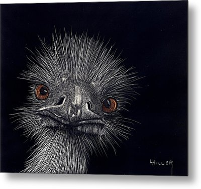 Emus In The Morning Metal Print by Linda Hiller