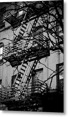 Fire Escape Tree Metal Print by Darren Martin
