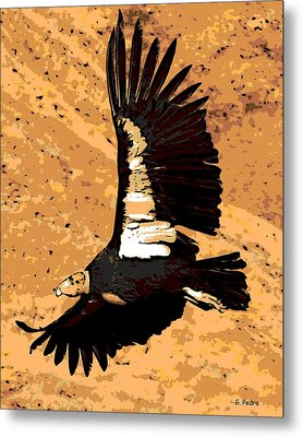 Flight Of The Condor Metal Print by George Pedro