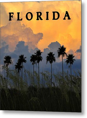 Florida Poster Metal Print by David Lee Thompson