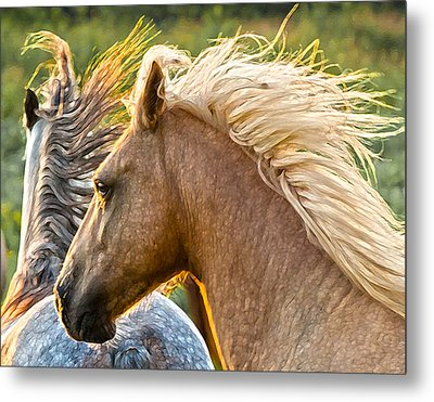 Free Spirits Metal Print by Ron  McGinnis