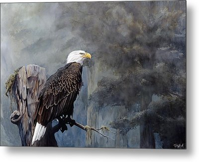 Freedom Haze Metal Print by Steve Goad