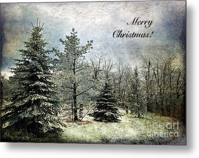 Frosty Christmas Card Metal Print by Lois Bryan