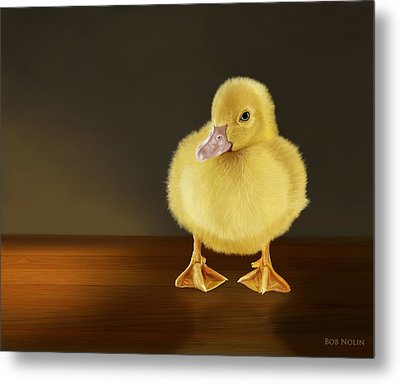Golden Glow Metal Print by Bob Nolin