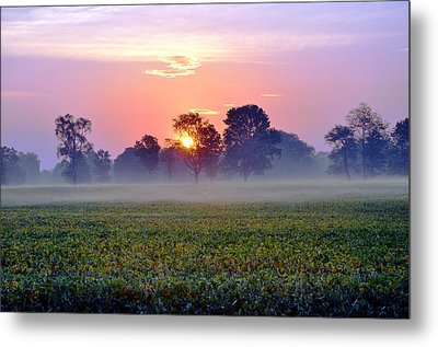 Good Morning Beautiful Metal Print by Brittany H