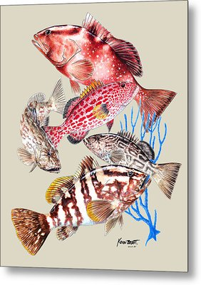 Grouper Montage Metal Print by Kevin Brant